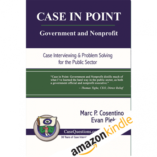 Case-in-Point-Government-and-Nonprofitv3-eBook-Kindle